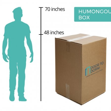 Humongous Box Storage Size